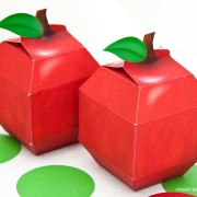 Piggy Bank Parties Apple Favor Box2