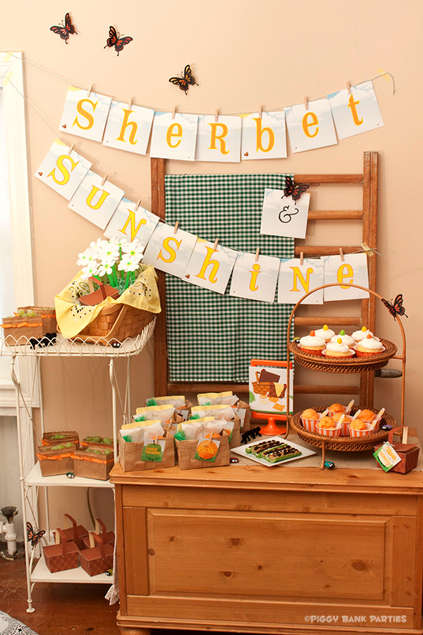 Piggy Bank Parties Sherbet-n-Sunshine Picnic 1