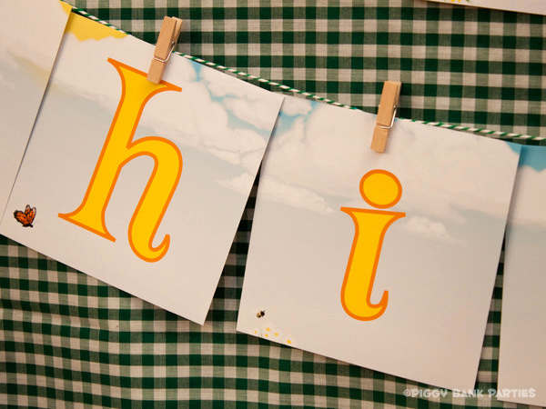 Piggy Bank Parties Sherbet-n-Sunshine Picnic 3B