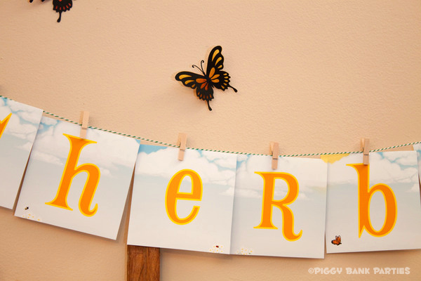 Piggy Bank Parties Sherbet-n-Sunshine Picnic 4B