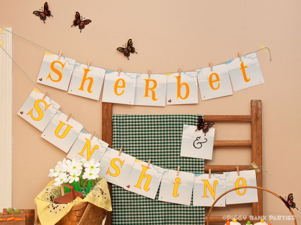 Piggy Bank Parties Sherbet-n-Sunshine Picnic 5B
