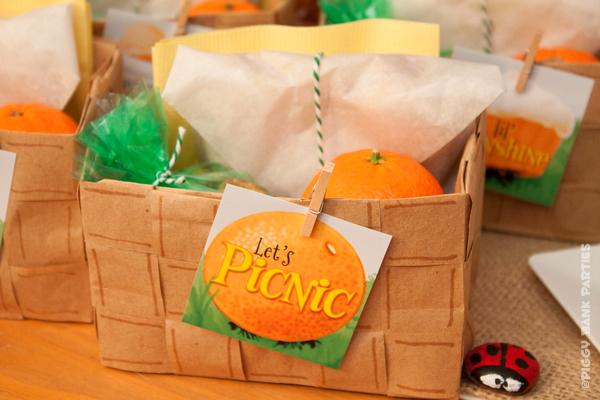 {magazine feature} sherbet & sunshine picnic buffet