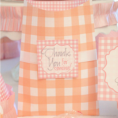 Large Favor Bag Template by Piggy Bank Parties